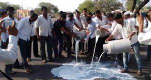 Sangamner: farmers stopped Mumbai's milk supply