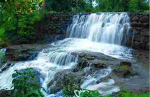 Continuous rains in Bhandardara dam Mula Dam