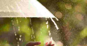 Wheather Alert next three days rain